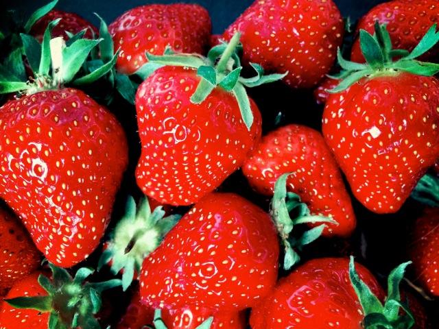 erdbeeren2