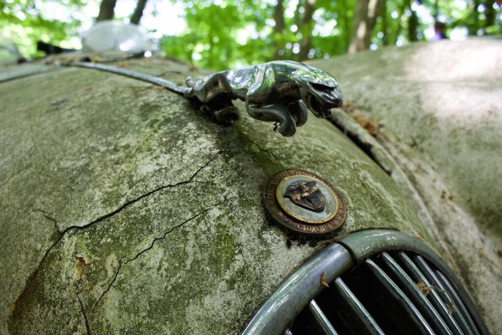 autofriedhof_vielweib_autoskulpturenpark_mettmann23
