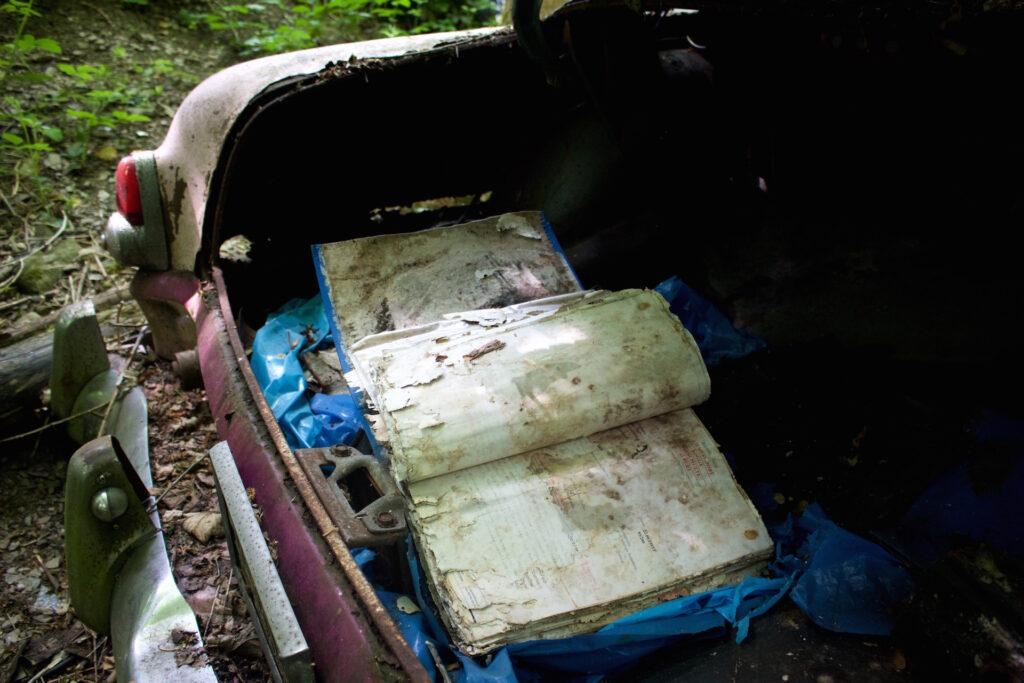 autofriedhof_vielweib_autoskulpturenpark_mettmann76