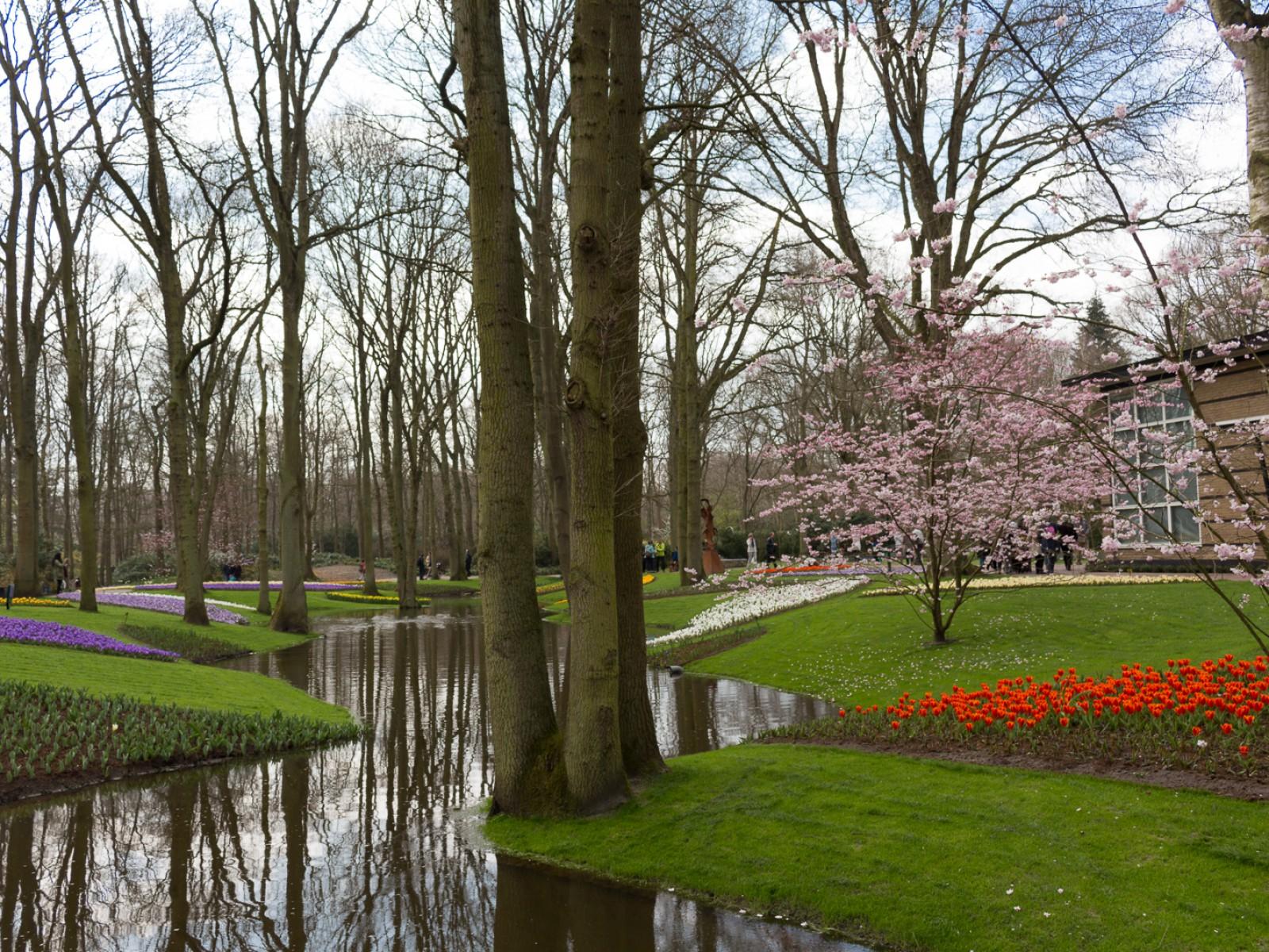 niederlande_noordwijk_keukenhof_reiseblog-2734