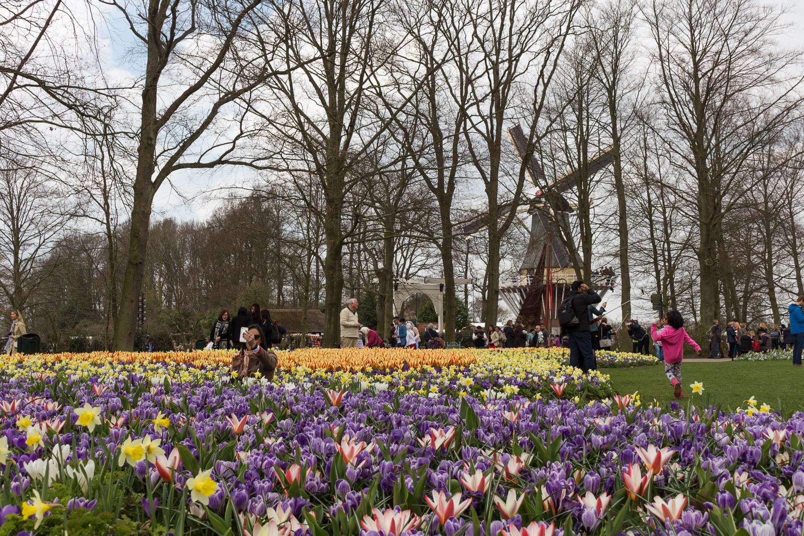 niederlande_noordwijk_keukenhof_reiseblog-2777