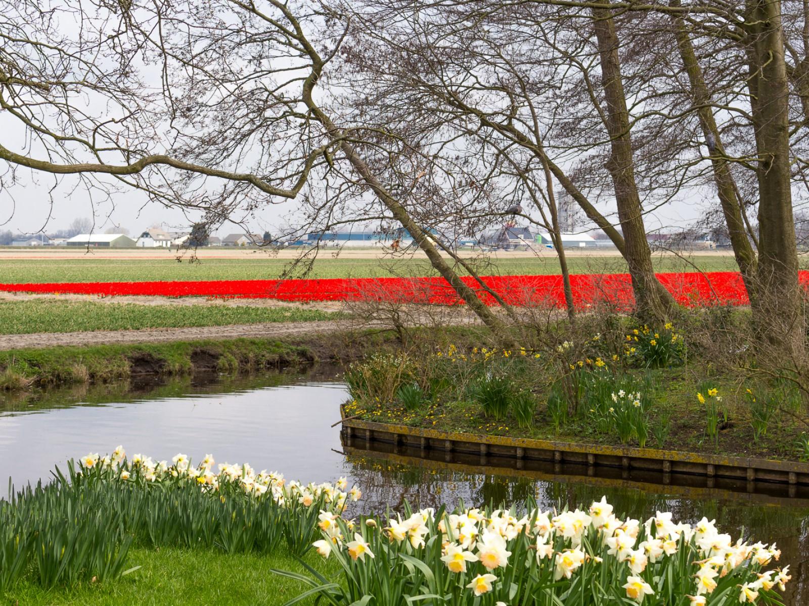 niederlande_noordwijk_keukenhof_reiseblog-2809