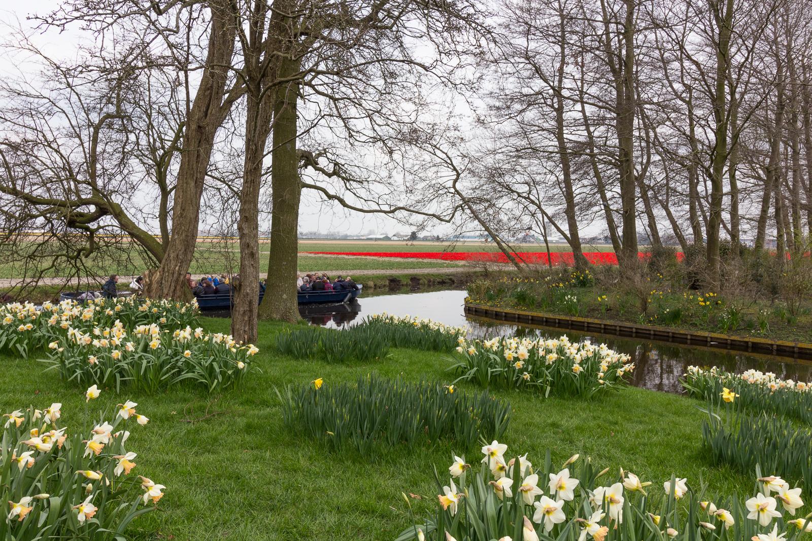 niederlande_noordwijk_keukenhof_reiseblog-2812