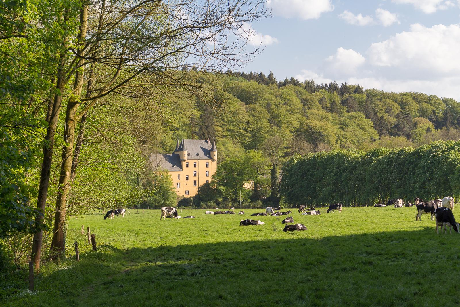 bergisches_land_cabriotour_ausflugstipps-3443