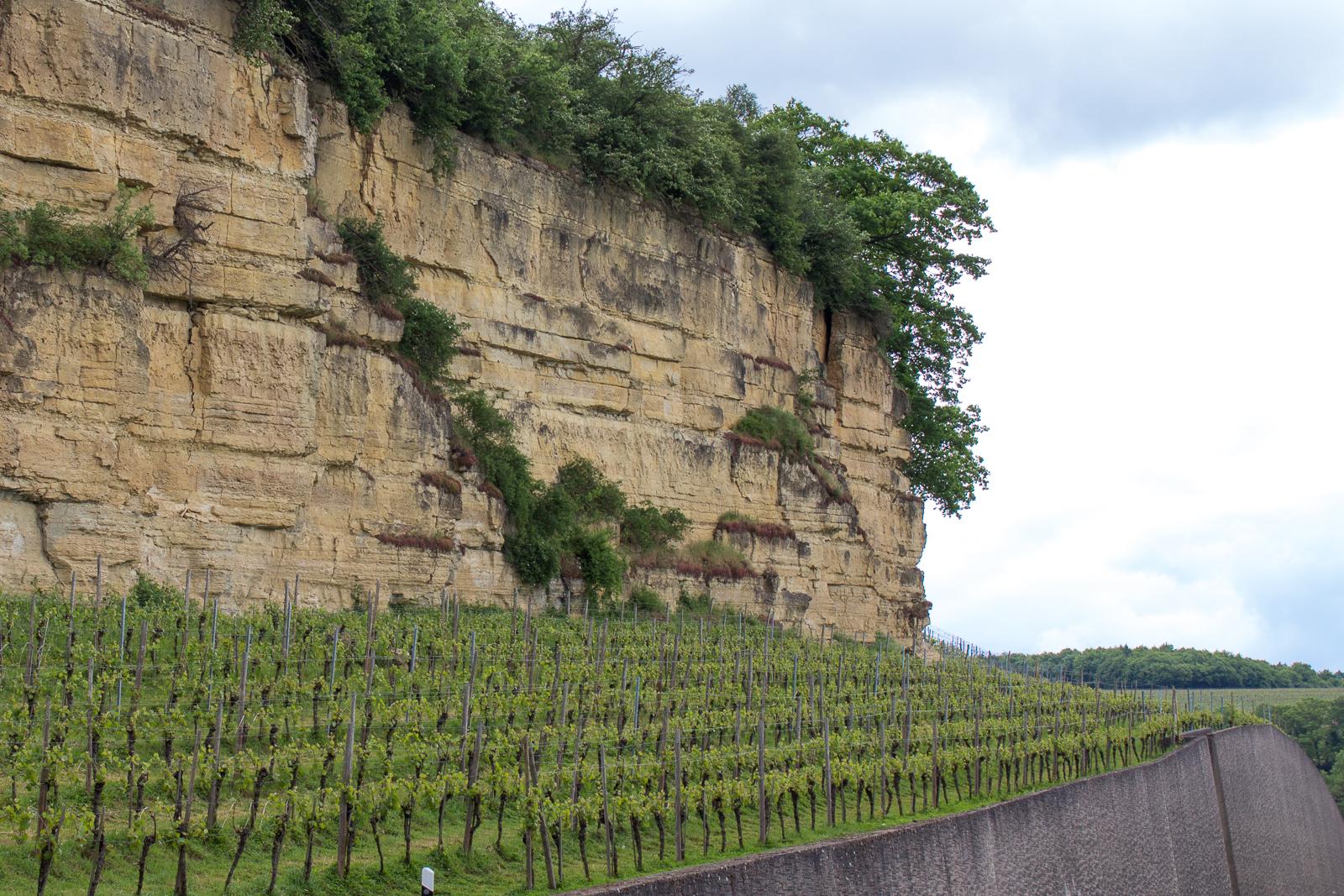 luxemburg_luxembourg_mosel_mediteraner_garten-4845