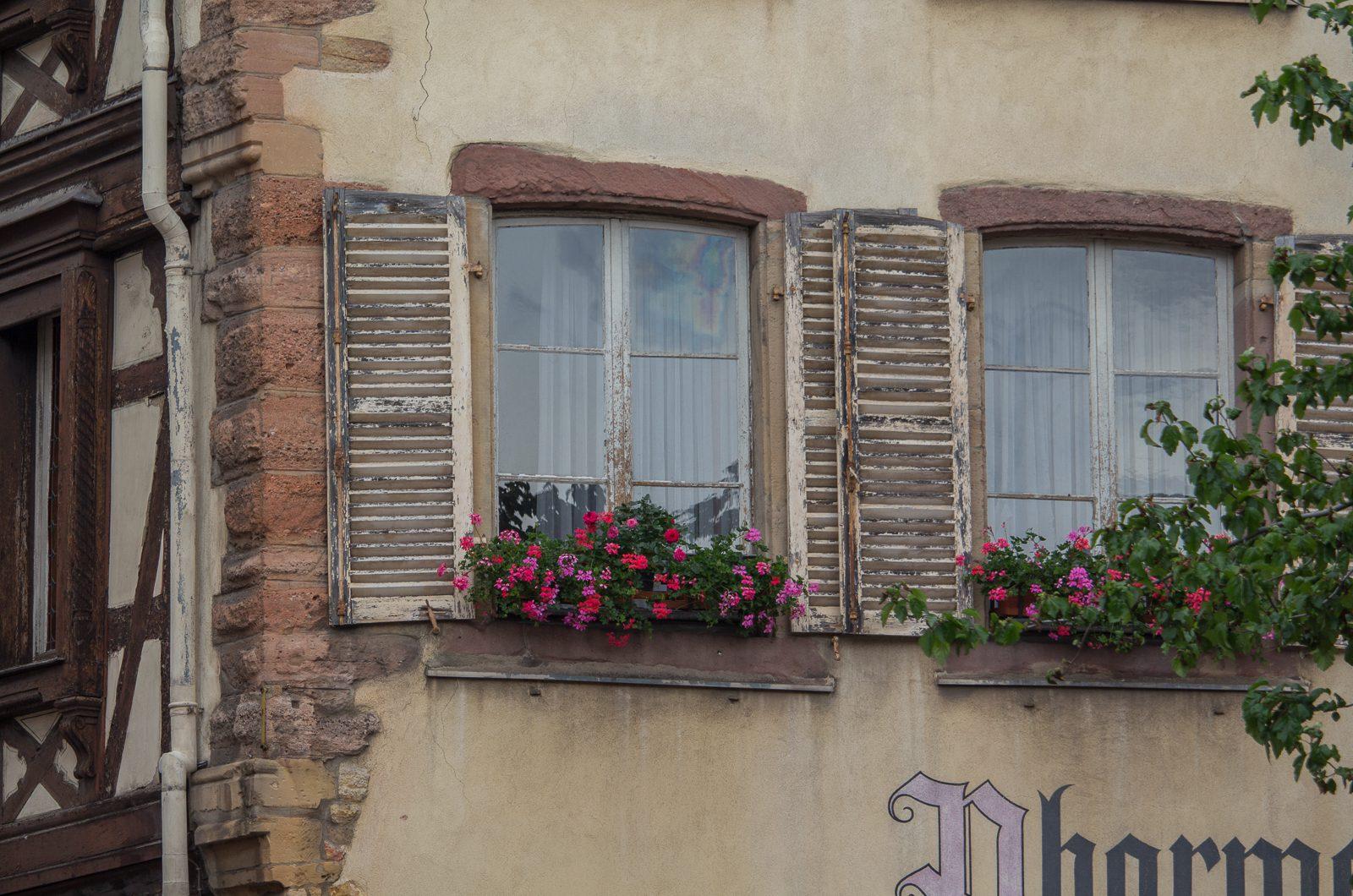 elsass_frankreich_colmar_vielweib_reiseblog-7124