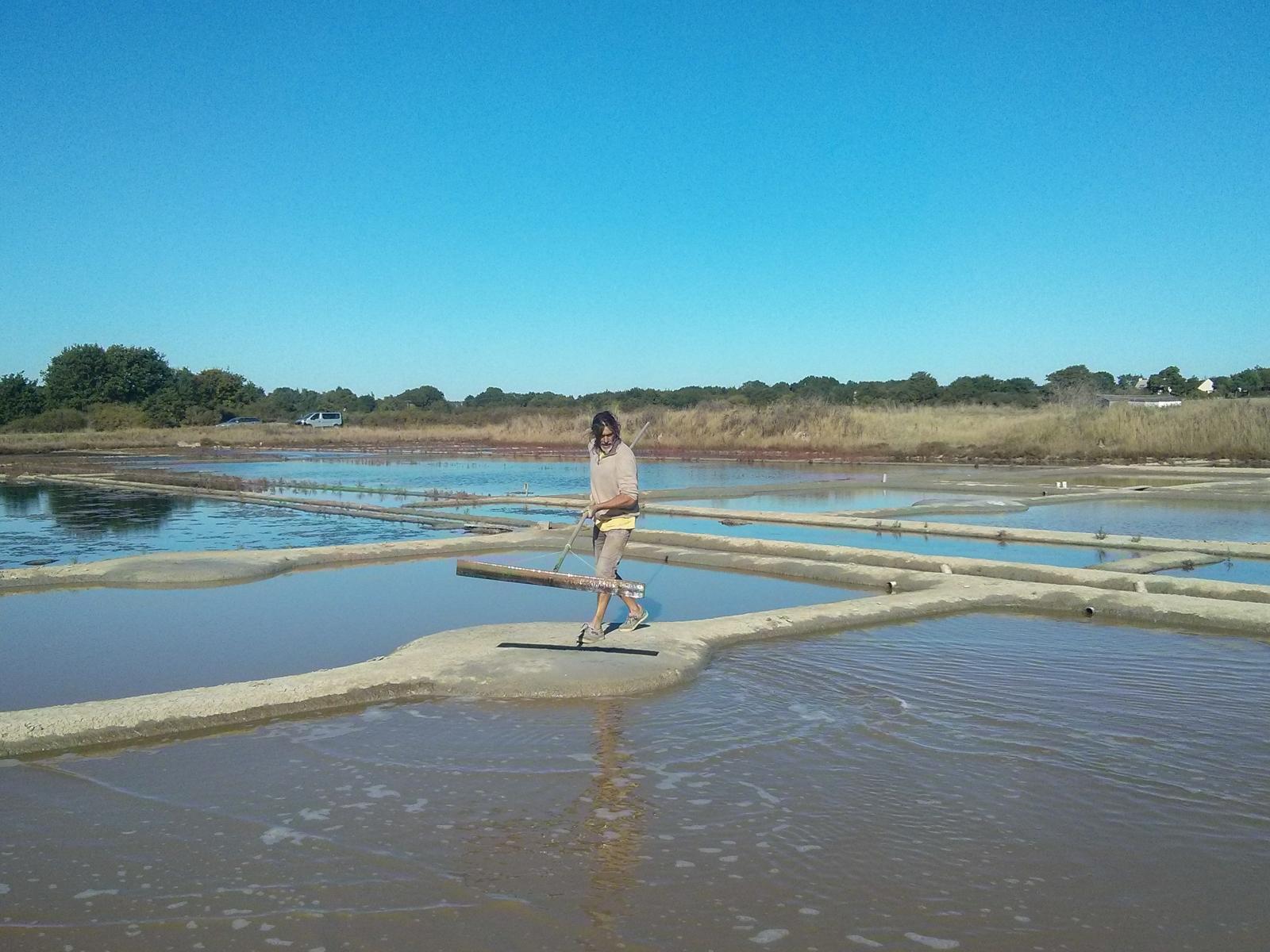Fleur de Sel: Die Salzgärten von Guérande