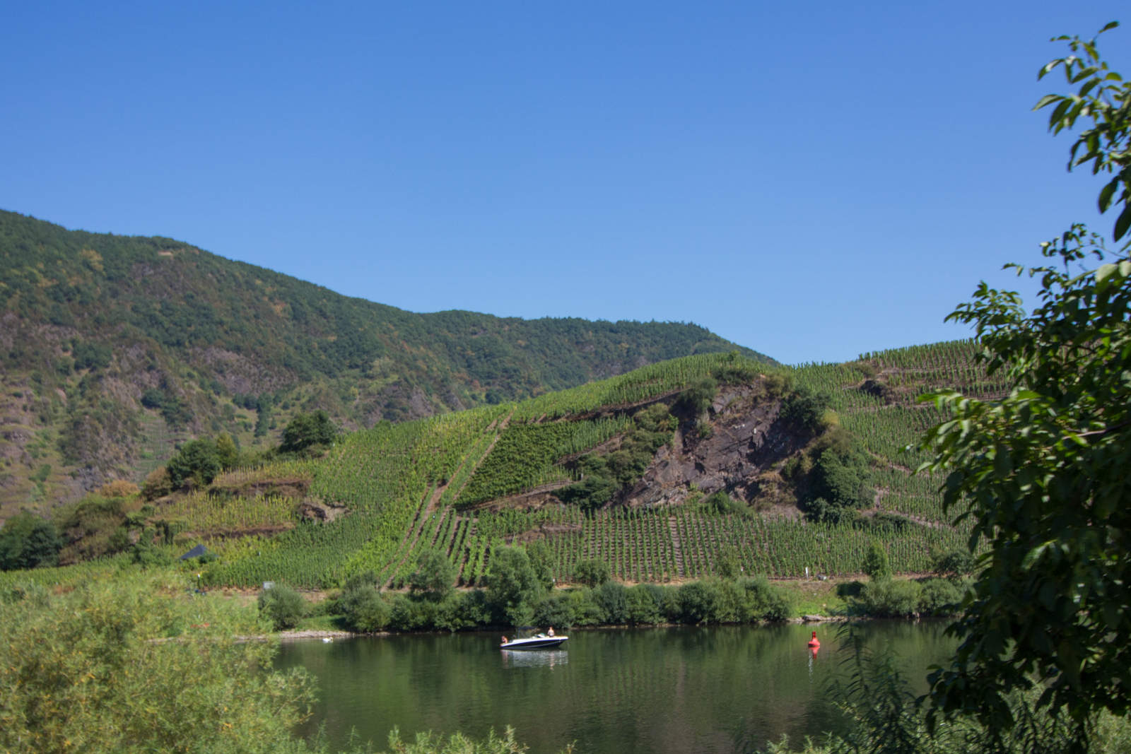 Wein, Mosel, Cabrio, Moseltour, Cabriotour an der Mosel,