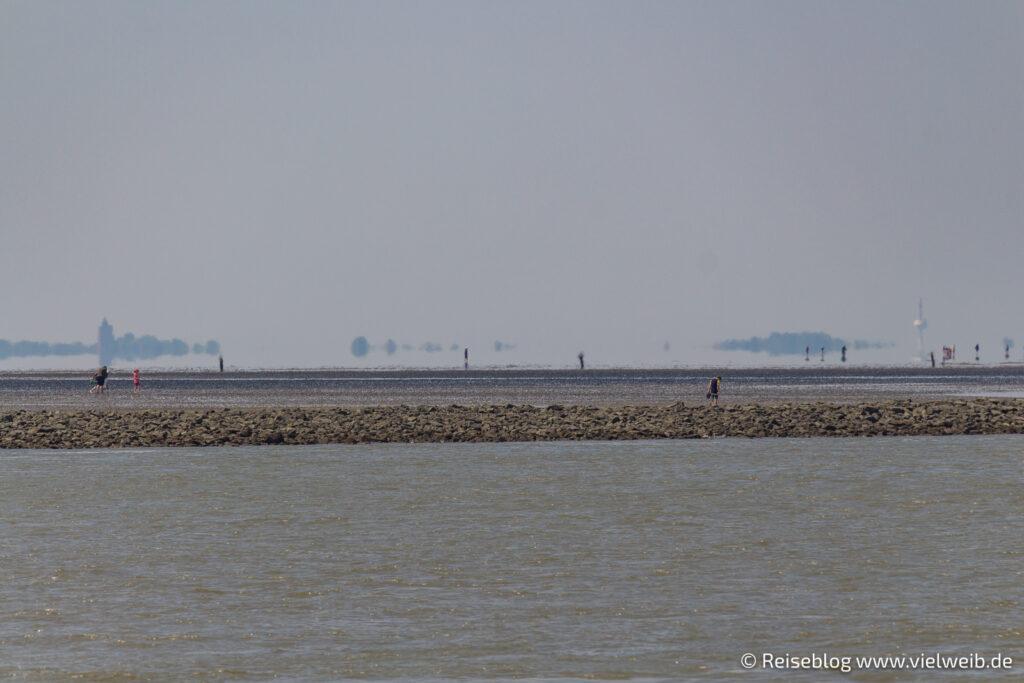 Cuxhaven, Hafen, Schifffahrt, Seehunde, Elbe