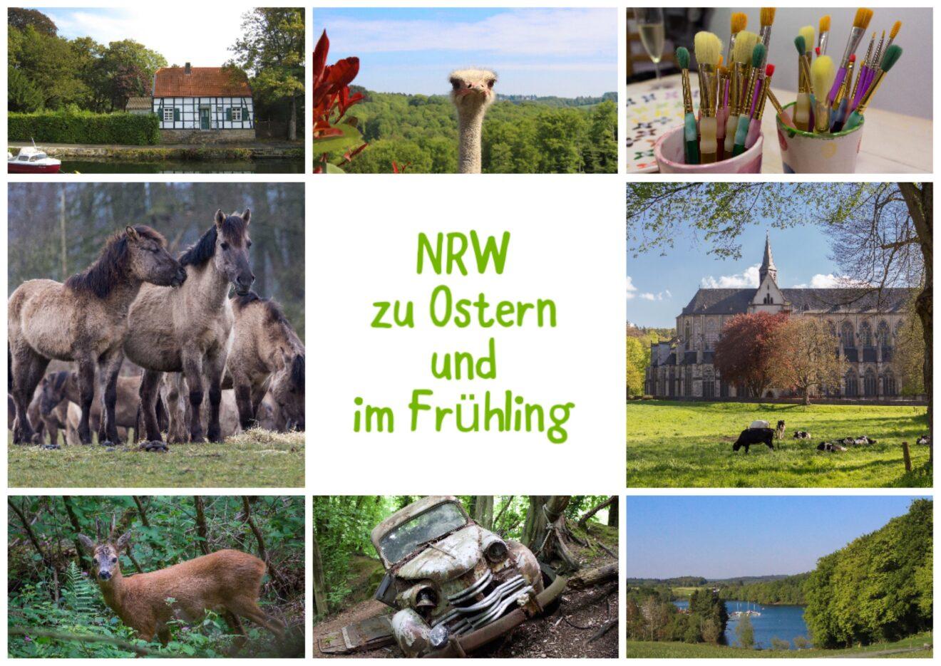 NRW zu Ostern und im Frühling: Kompakter Ausflugs-Guide!