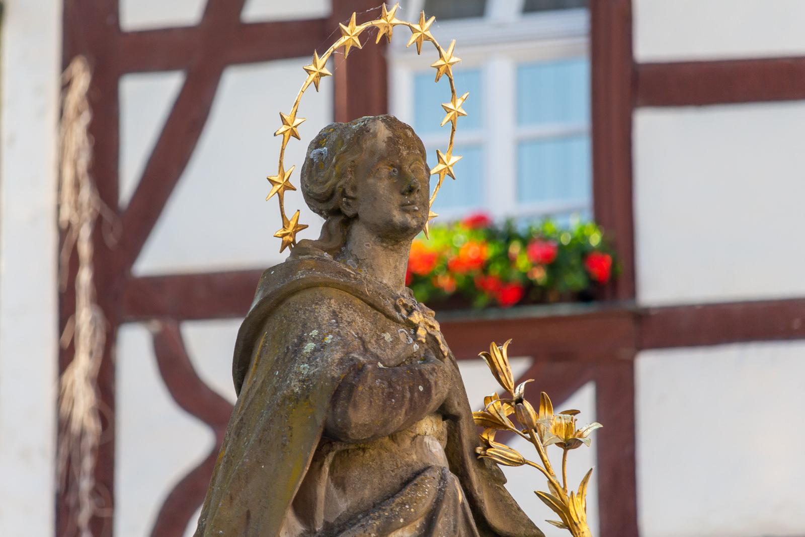 Mainschleife, Fränkisches Weinland, Volkach