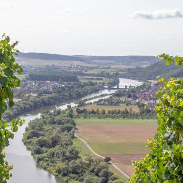 Karlsstadt, Fränkisches Weinland, terroir f
