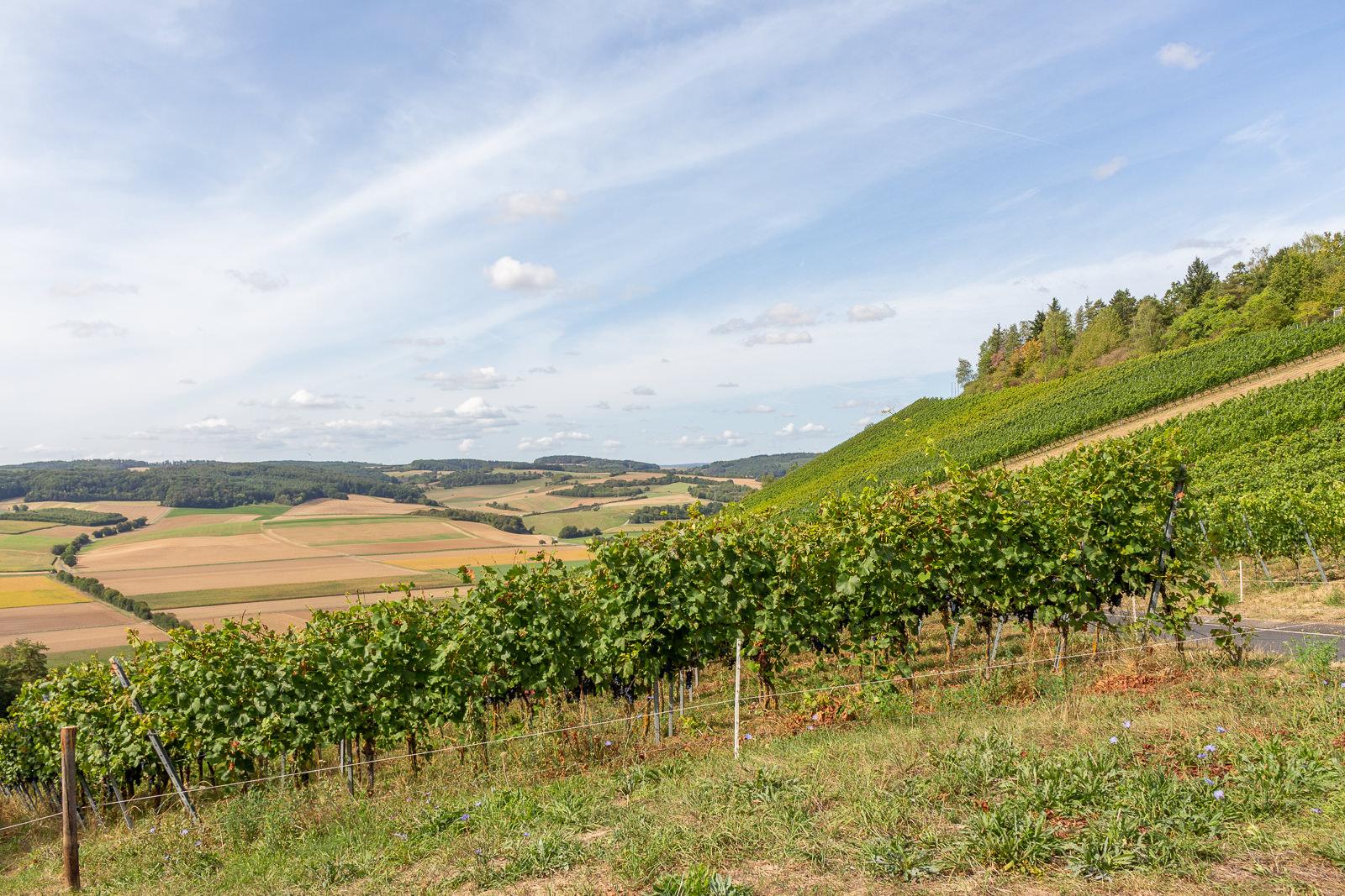 Karlsstadt, Fränkisches Weinland, wein