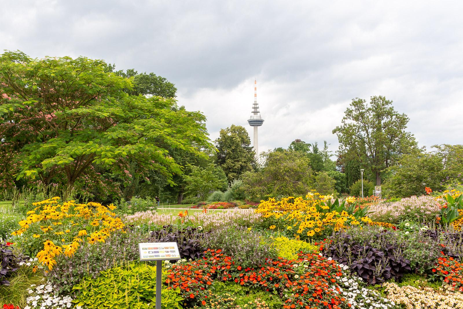 Luisenpark ist der größte Stadtpark von Mannheim